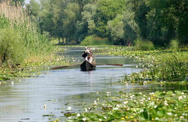 local helicopter rides with Danube Delta Fishing And Adventure Trip 64 on Shamwow Guy Cleans His Act 8c11094914 as well Danube Delta Fishing And Adventure Trip 64 further Activities moreover Helicopter Tour Of Dubai 15 Minutes further Gallery.