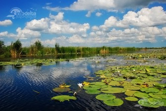 A Huffington Post article: Visit Romania - Danube Delta